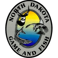 Wednesday is deadline to apply for swan hunting license | KFGO