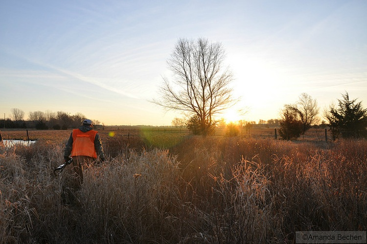 Hunters Check Nearly 95000 Deer Opening Weekend; Monster Buck Bagged in St