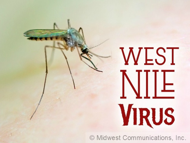 Test positive for West Nile virus