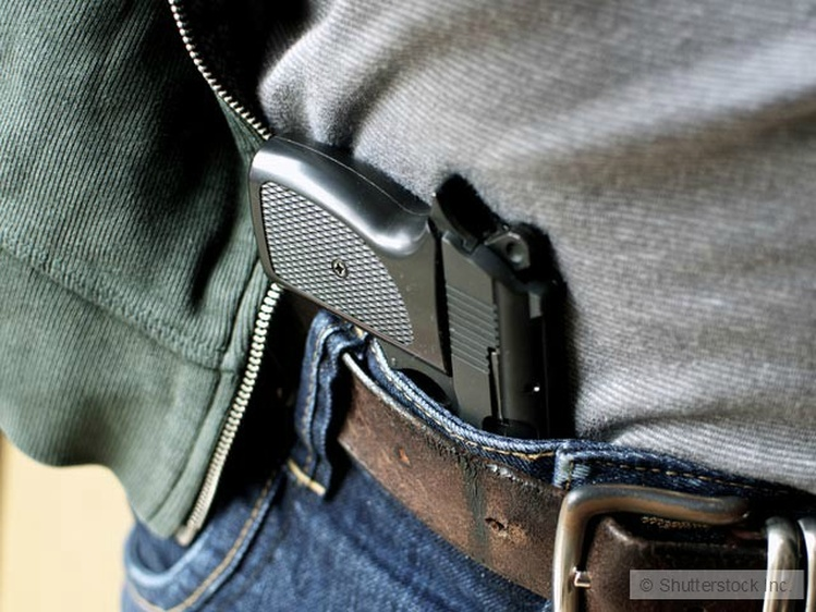Reject concealed-carry gun law expansion
