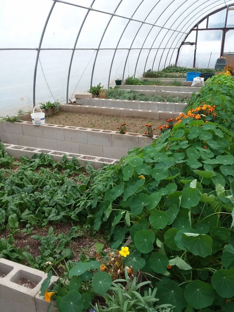 Ledgeview Gardens In De Pere Hosted Tuesdayu0027s Event In One Of Their  Greenhouses. PHOTO: