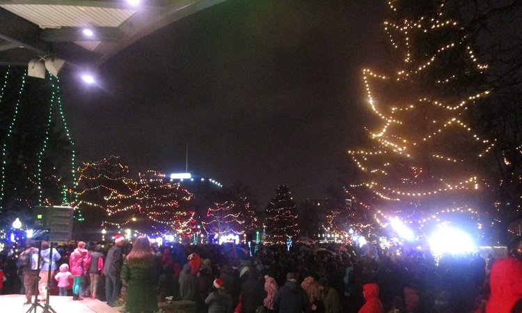 Light your excitement with a Christmas tree lighting ceremony