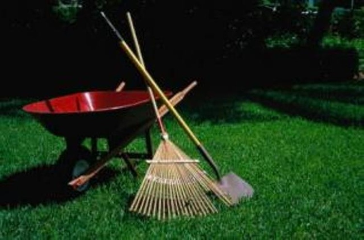 holland s spring clean up begins today news 1450 99 7 whtc
